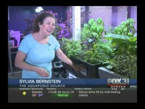 Aquaponics – Growing Vegetables Without Soil – Fox News interviews The Aquaponic Source