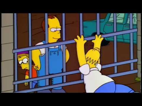 Homer Simpson Stupider Like A Fox
