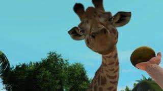 Hoy un gran animal llega a nuestro zoo! y otro no tan grande pero m...