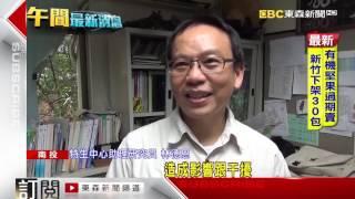 台灣藍鵲激戰臭青公 民眾驚叫…搶戲