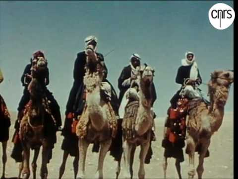 Bedouin tribe of Tiyaha in Egypt & Palestine on 1962 قبيلة تياها، فلسطين و مصر