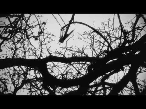 Mark McKinney - Diggin My Grave (Official Video)