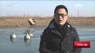 China Agricultural Reform