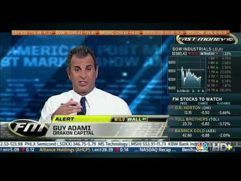 CNBC, 05/07/10, Guy Adami says we are going lower (Dow 10,380 this day)