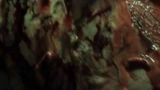 """Goregasm"" (OFFICIAL US Trailer)"