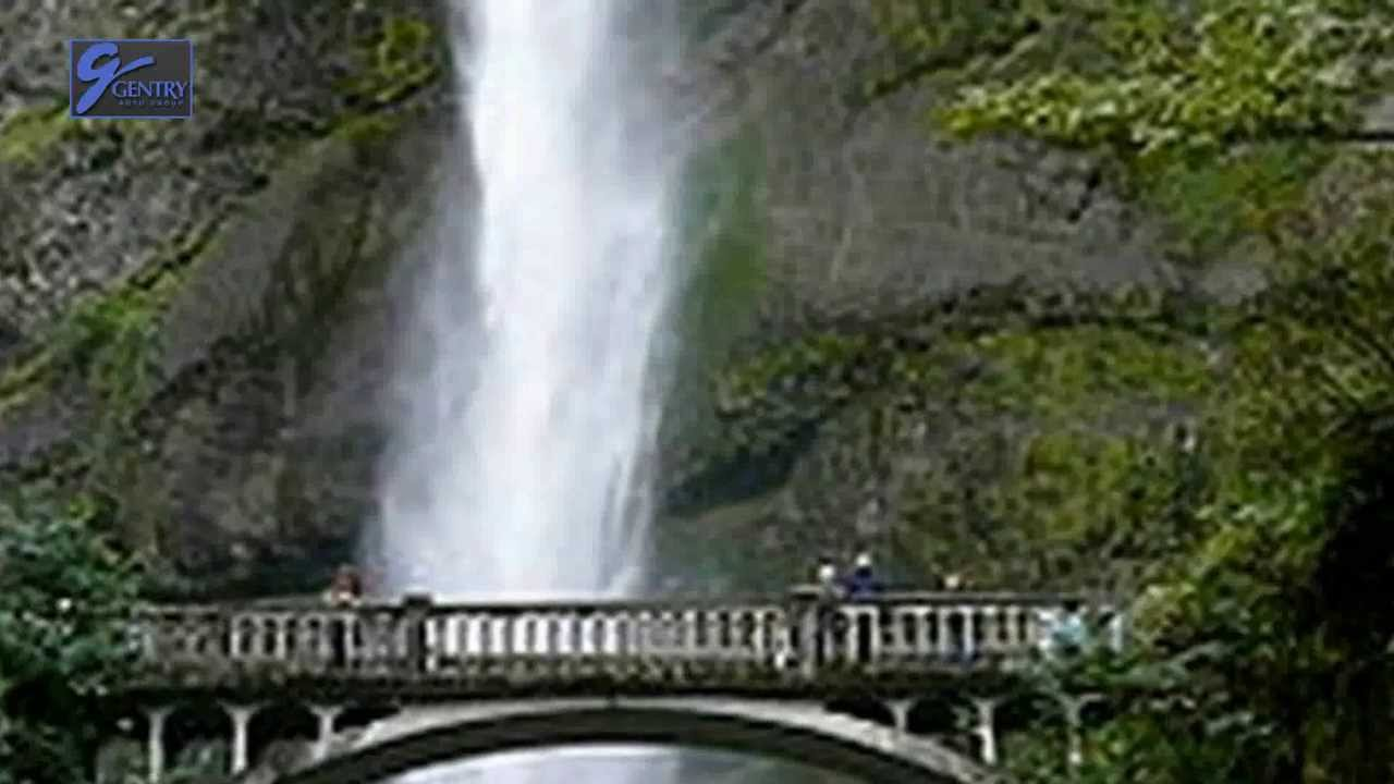 Image Result For Top Attractions