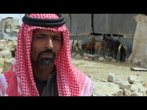 فيلم وثائقي بعنوان (هذه فلسطين)(This is Palestine)