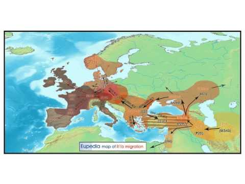 Overview of Haplogroups