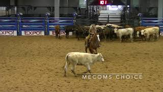 5-26-19 Am SW Tx CHA - Belton, TX - Paige Kincaid - MECOMS CHOICE - 15K NH - 73