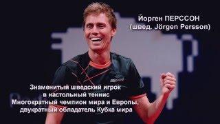 Уроки настольного тенниса с Чемпионами