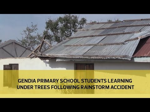 Gendia primary school students learning under trees following rainstorm accident