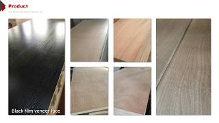 China High Quality IICL 28MM Container Flooring Plywood