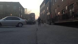 Doot The Bull Terrier Exercising