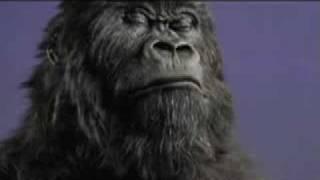 Cadburys Gorilla Drums Out Elton John