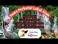 Suara Perkutut Lokal Alam Ampuh Untuk Pancingan Burung Macet Bunyi Dan Terapi  Mp3 - Mp4 Download