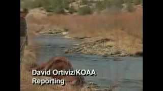 UFO Cattle Mutilation In Colorado Mar 11, 2009