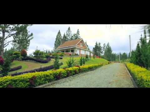 Mountain Pines Farm. Manolo Fortich, Bukidnon.