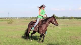 open pasture figure 8 drill for barrel horses