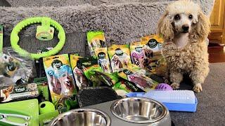 Новогодние подарки для собак от компании TRIOL. Обзор игрушек и лакомств.