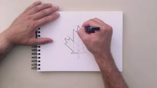 How to Draw - Maple Leaf
