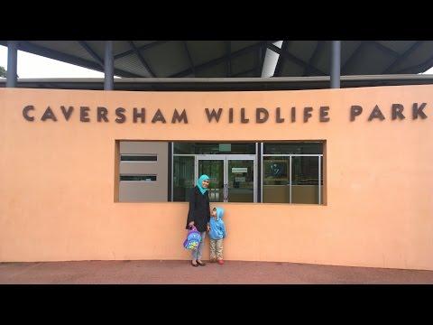 Caversham Wildlife Park Train - Western Australia