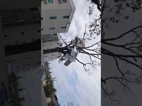 cupey san juan puerto rico  after huracane maria