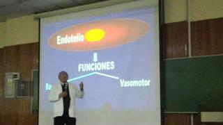 Endotelial à ligada disfunção inflamação vascular