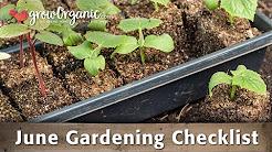 June Gardening Checklist: 19 Tips to Keep Your Organic Garden Healthy in June