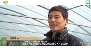 대저토마토홍보영상