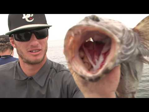 542 Ranger 85 at the Channel Islands | SPORT FISHING