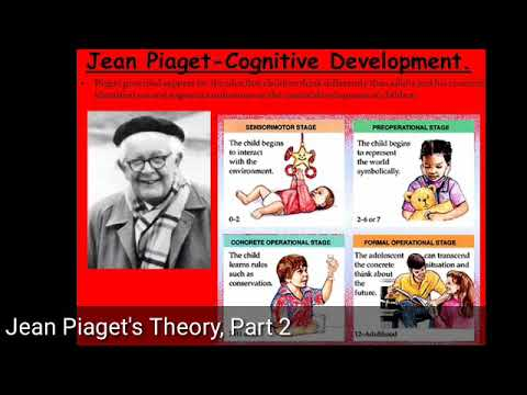 Jean Piaget\u0027s Theory, Part 2Bengali - YouTube - piaget's theory