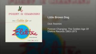 Little Brown Dog