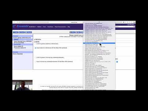Clip: Gene ID Conversion With BioMart