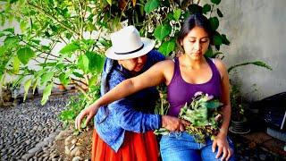 Doña Isabel does spiritual cleansing (limpia espiritual) and ASMR massage/neck cracking