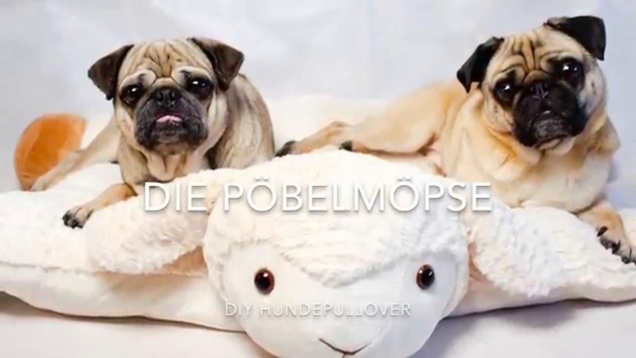 DIY Hundepullover nähen - YouTube
