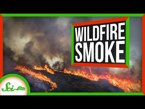 What You Need to Know About Wildfire Smoke | SciShow News