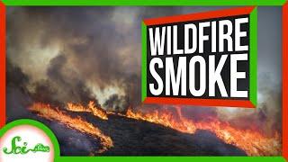 SciShow: Wildfire Smoke thumbnail