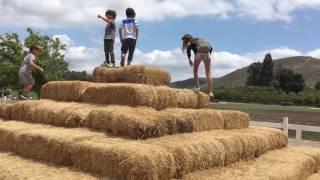 Sasha Zvereva Live Blog #08: Underwood Farm (part 1)