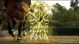 Национальный конный парк - КСК Левадия