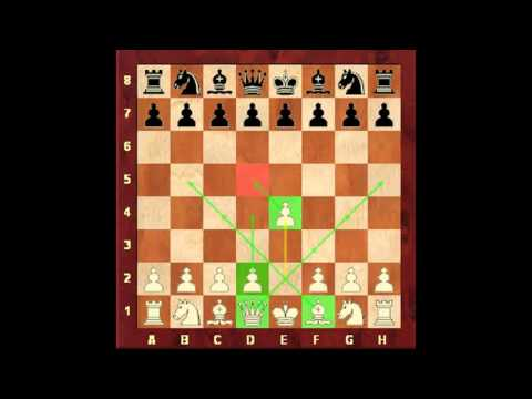 Chess for Beginners. Chess Openings #1. Opening Fundamentals. Eugene Grinis. Chess