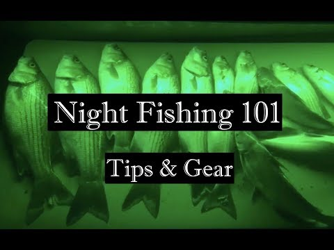 Night Fishing 101: Everything You Need To Know To Get Started Night Fishing!