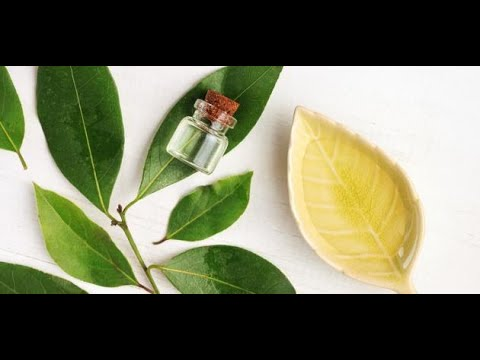 f46b1e487d1b9 Benefits of camphor for the hair and the benefits of sex for men for women  eucalyptus oil.