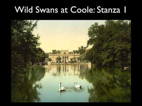 Analysis Yeats Wild Swans at Coole video