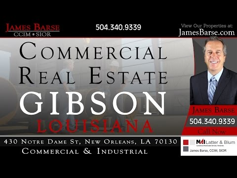 Lot 6 Highway 182 Gibson LA 70356 Vacant Land for Sale | JamesBarse.com