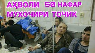 ХОЛИ ЗОРИ 50 МУХОЧИРИ ТОЧИК