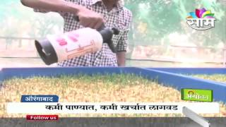 'Mati Vina Sheti' - Hydroponic System- A Unique solution to fodder scarcity