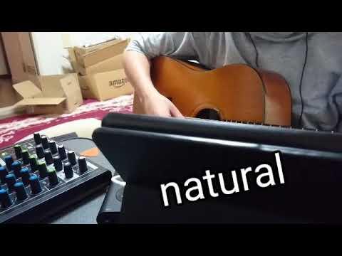 FISHMAN  NEO-D Single Coil  Review +α