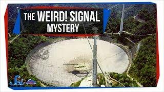'Weird! Signal' Mystery Solved!