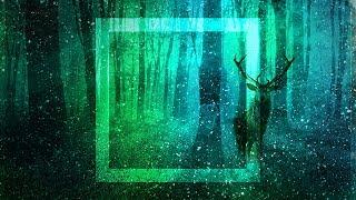 "[Electronica] Dan Sieg - Gloom [""A Sense Of Wonder"" Artist Album]"