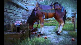 Witcher 3 - Roach eating apples